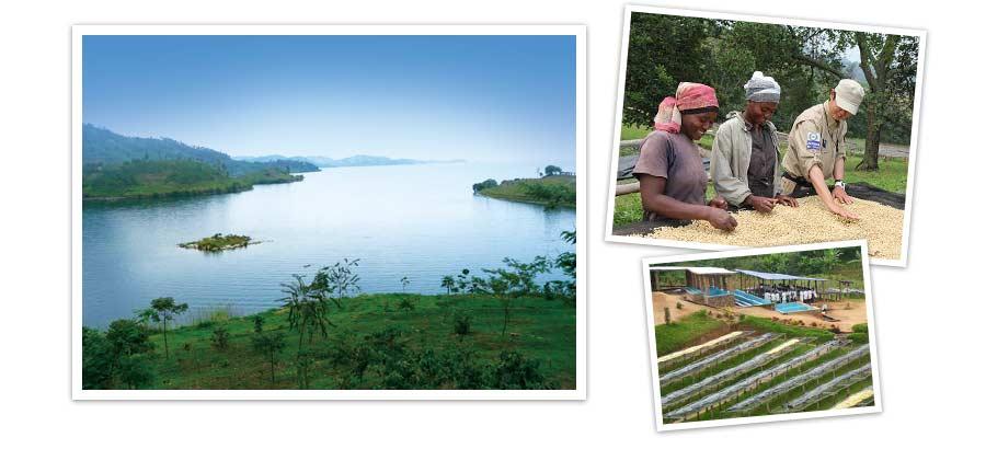 ルワンダの写真