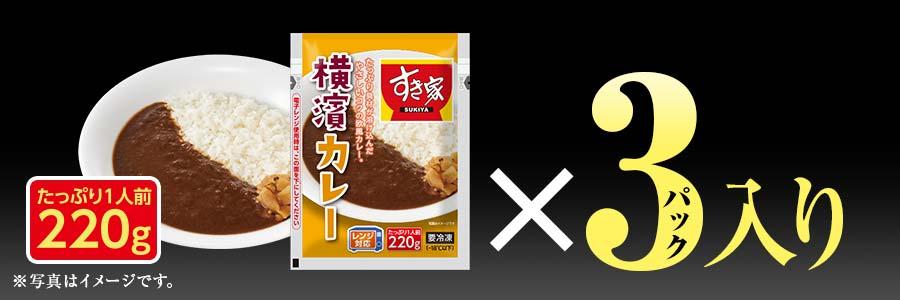 すき家 食べ比べセット8種19食 横濱カレー