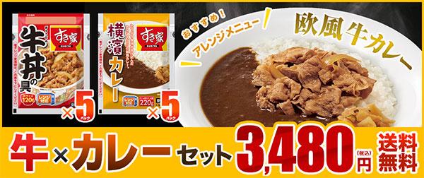 牛×カレーセット